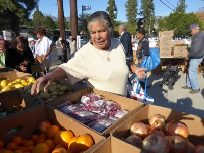 Foto: Rosa Orellana, 76, picks fruits and vegetables at the food bank organized by Calvary Baptist Church in Pacoima. A large portion of those who come to the food bank are seniors. (Francisco Castro/La Opinión)