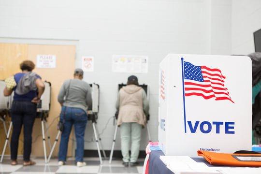 Foto de las elecciones primarias 2020