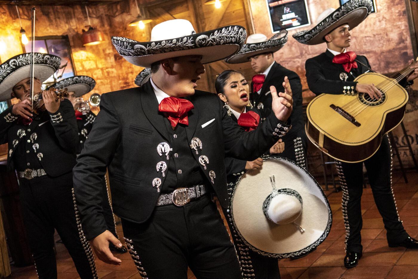 Mariachi Herencia de México de vuelta en Madison